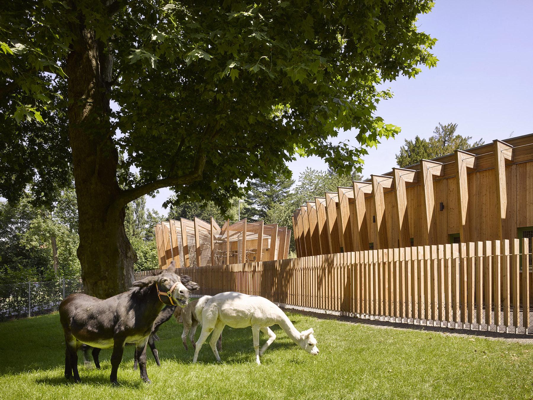 Zoológico de animales acariciables en Öhringen