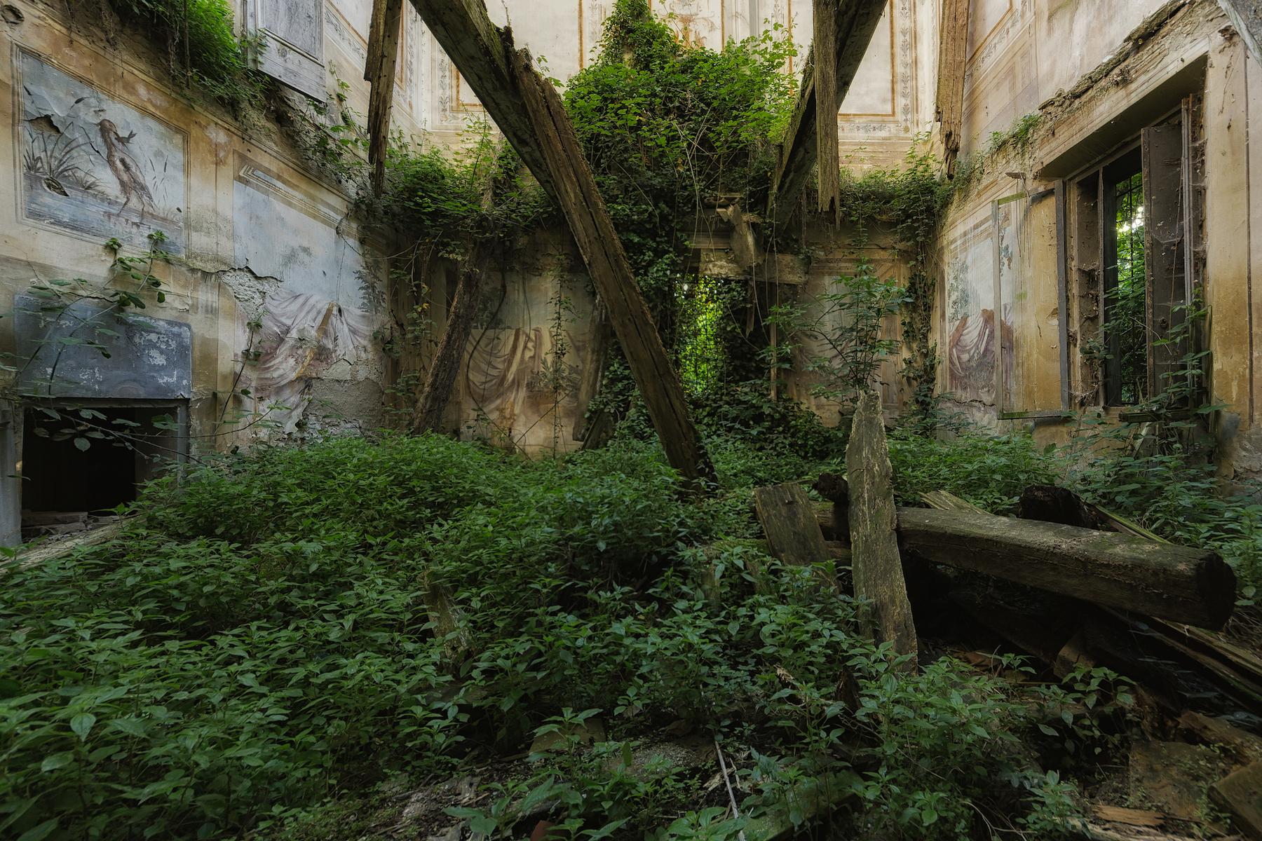 Lugares abandonados. Naturaleza ocupando una casa por Stefan Baumann
