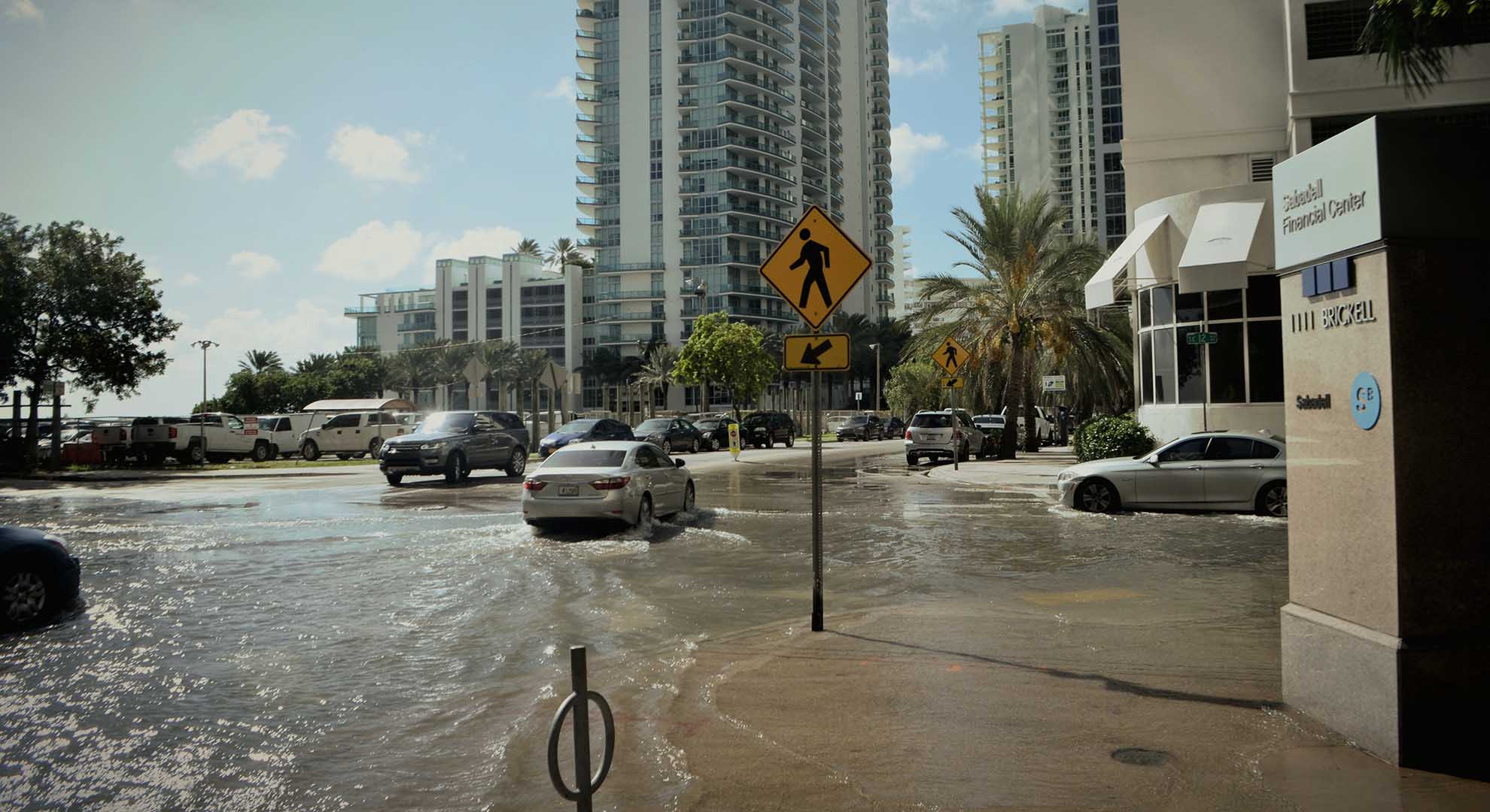 Even as sea water bubbles up through the streets, architects continue to build in Miami as we are asked for.