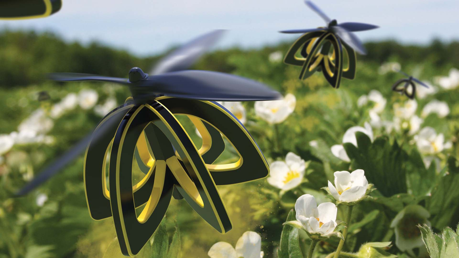 Plan Bee is a flying robot and sizeable drone that flies about 10 feet above orchards, dropping an even coat of pollen