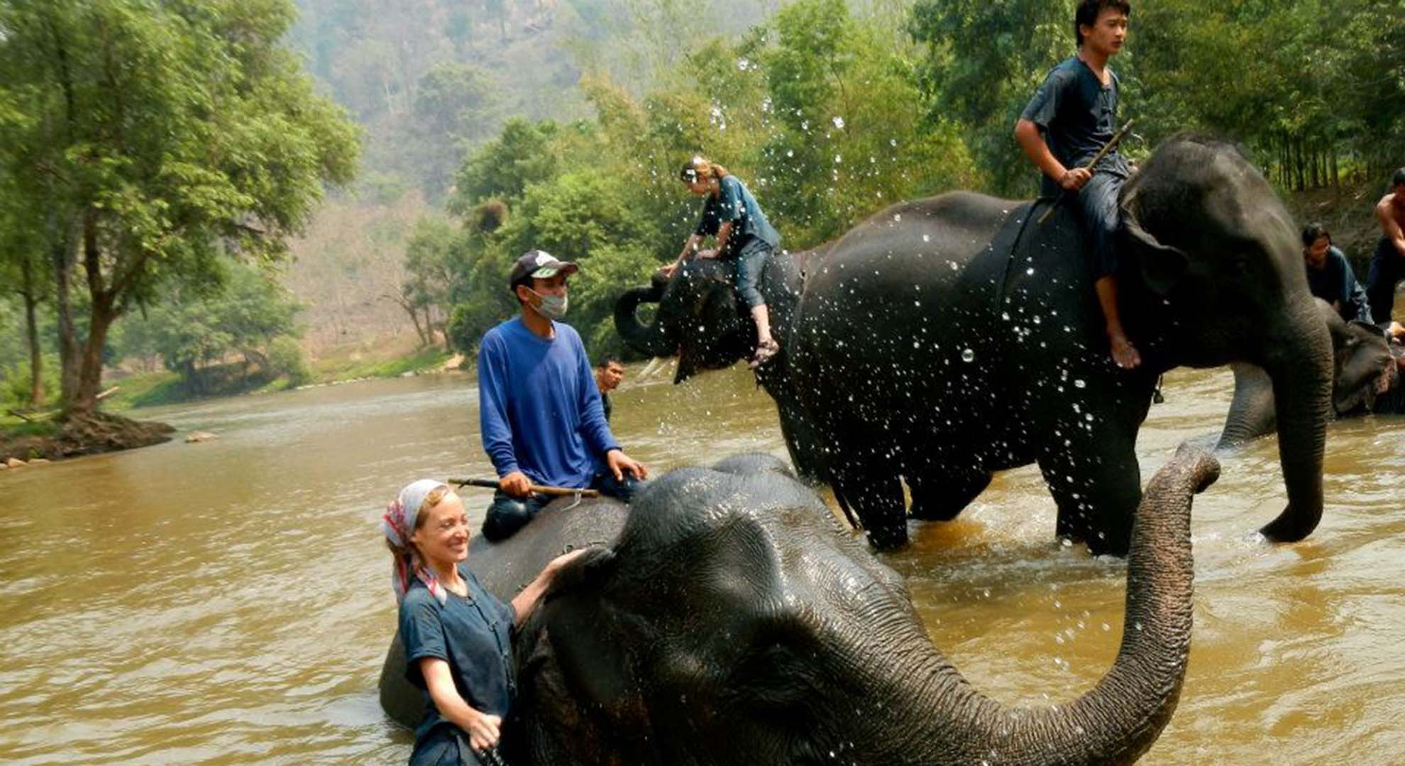 SoWas caring for elephants in Chaing Mai