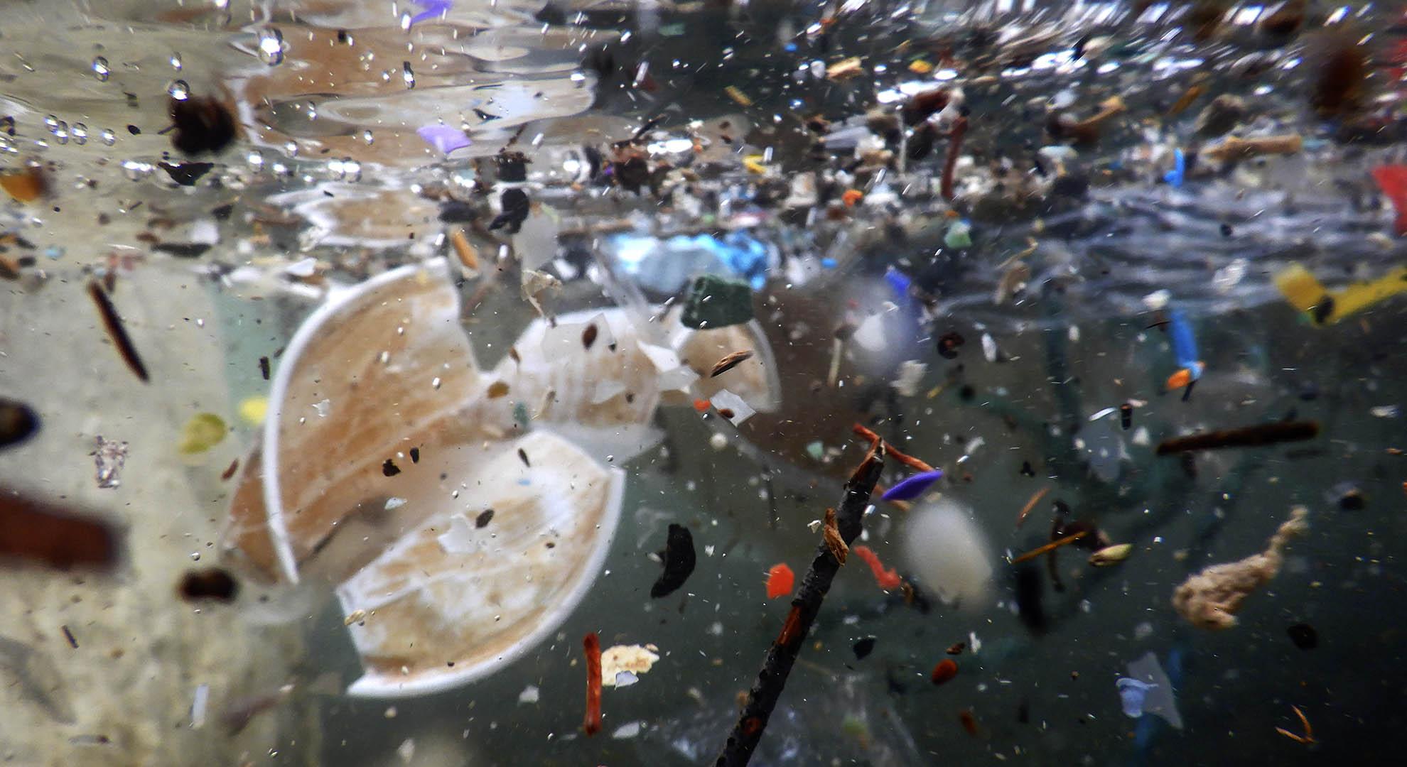 Iniciativa Pacific Garbage Screening